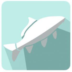 Aplikacija mRibič